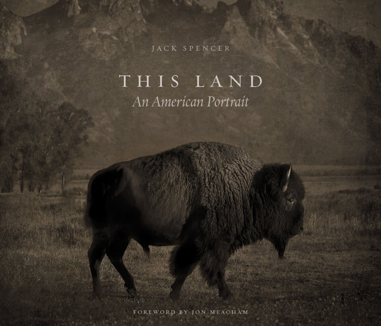 This Land, de Jack Spencer