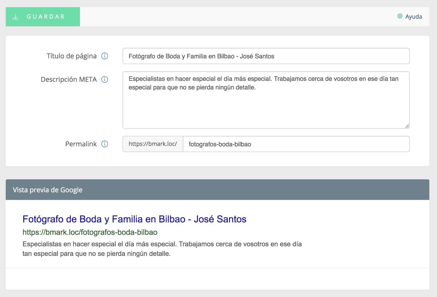 Vista previa de titulo y etiqueta META para Google en el panel de control de Bluekea